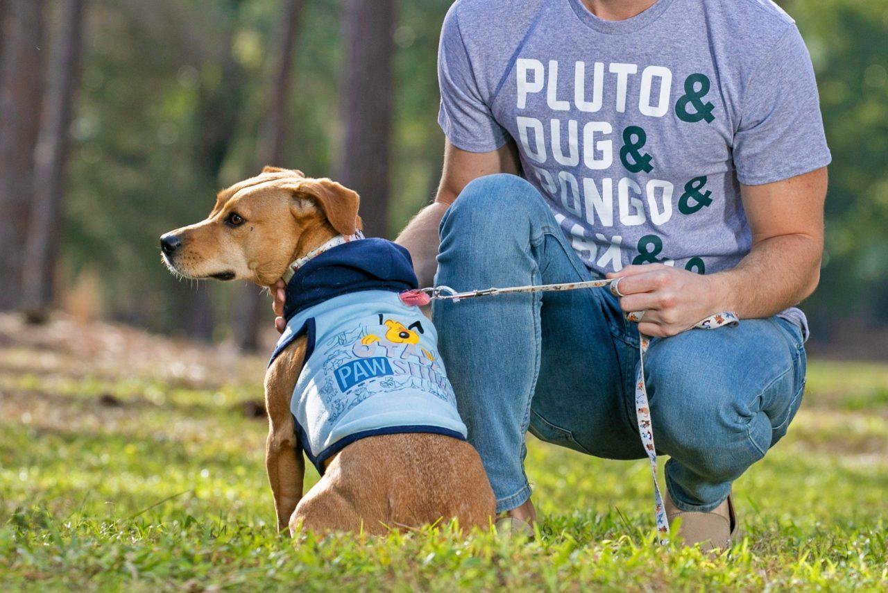 dog wear a shirt